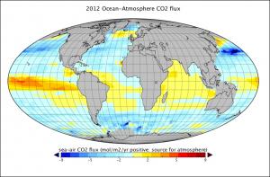 global CO2 exchange
